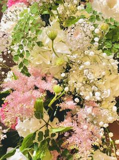 花のクローズアップの写真・画像素材[2221299]