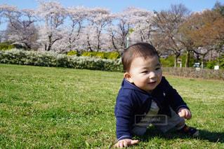 草の中に立っている小さな男の子の写真・画像素材[1269516]