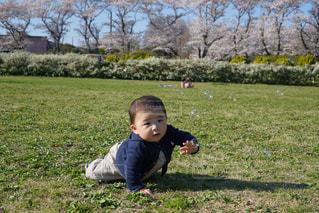 公園でピクニックの写真・画像素材[1269519]