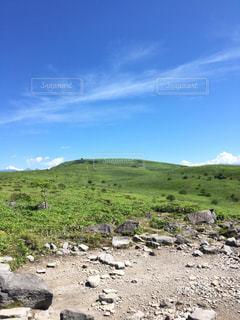 羊山の上に立っての群れの写真・画像素材[1324069]