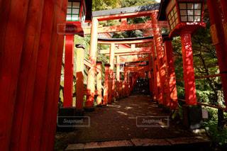 太皷谷稲成神社の写真・画像素材[1606782]