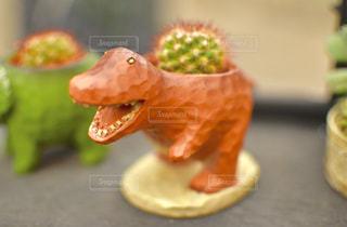 サボテンザウルスの写真・画像素材[1274163]