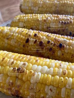 トウモロコシのグループの写真・画像素材[3961006]