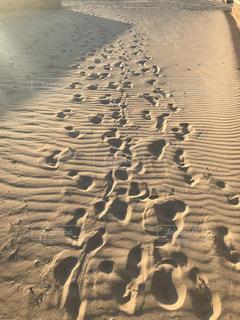砂浜の足跡の写真・画像素材[1275595]