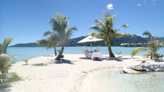 タヒチ タハア島の子島でのカップル用ランチの写真・画像素材[1283579]