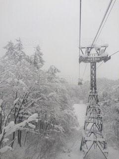冬の写真・画像素材[44244]