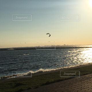 カイトサーフィンの写真・画像素材[1279602]
