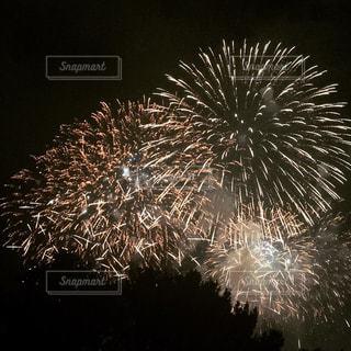 空に花火の写真・画像素材[1279719]