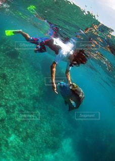水の中の出会いの写真・画像素材[1280015]