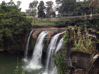 滝と木の橋の写真・画像素材[1280607]