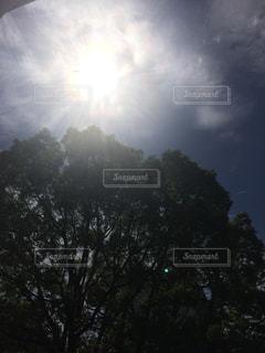 空に太陽の写真・画像素材[1285158]