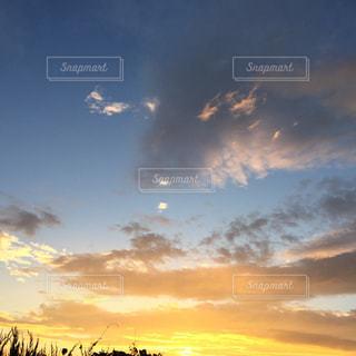 朝日が眩しい…龍みたいの写真・画像素材[1347950]