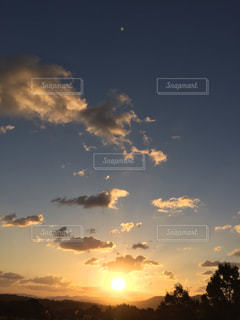 チャーミー来日の翌朝の写真・画像素材[1503013]
