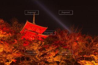 風景 - No.212162