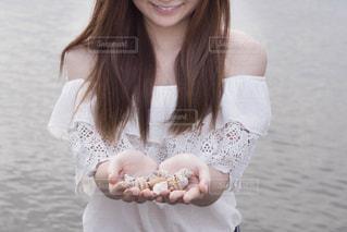 海辺の貝殻の写真・画像素材[1280716]