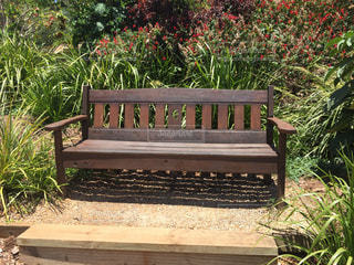 木製ベンチの写真・画像素材[1280989]