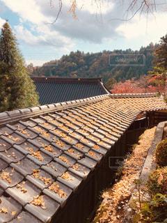 大窪寺にての写真・画像素材[1633763]