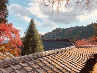 秋の大窪寺の写真・画像素材[1633764]