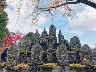秋の大窪寺の写真・画像素材[1633769]