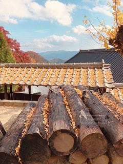 大窪寺にての写真・画像素材[1633770]