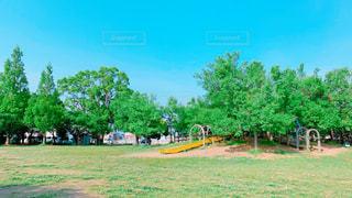 日曜日の公園♪の写真・画像素材[2168842]
