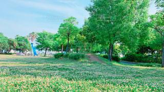 公園にて♪の写真・画像素材[2168862]