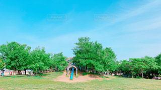 青空の公園♪の写真・画像素材[2168868]