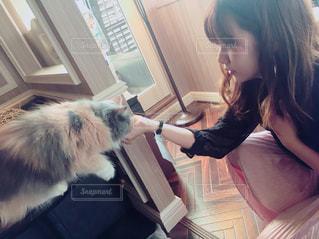 猫の横に立っている女性の写真・画像素材[1301875]