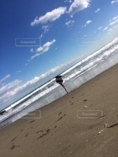 青い空と海と浜辺の写真・画像素材[1282580]