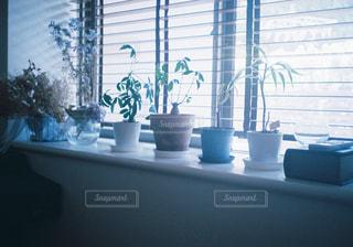 花の花瓶が窓の前で座っています。の写真・画像素材[1283698]