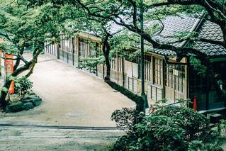 庭のベンチの写真・画像素材[1283848]