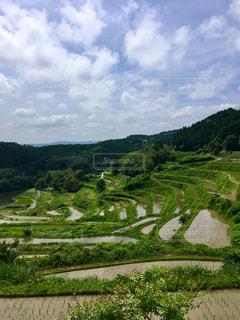 岡山の棚田巡り。の写真・画像素材[1283367]