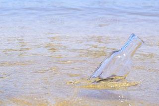 水瓶の写真・画像素材[1287218]