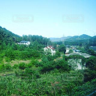 背景の木と大規模なグリーン フィールドの写真・画像素材[1283905]