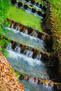 背景の木と滝の写真・画像素材[1285177]