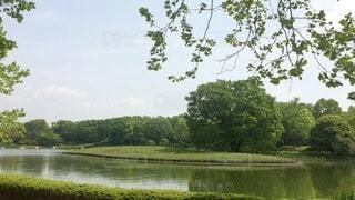 風景 - No.47980