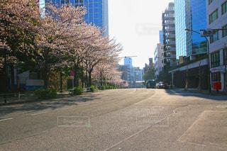 都市の空の街桜の写真・画像素材[1285200]