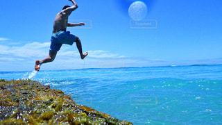 ハワイ in the dive!の写真・画像素材[1286855]