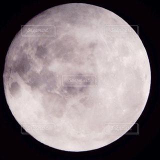 満月の写真・画像素材[1288525]