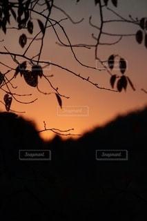 山里の夕暮れの写真・画像素材[2730680]