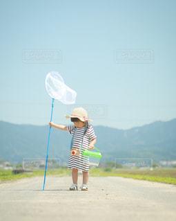 夏のはじまり🐞の写真・画像素材[1286097]