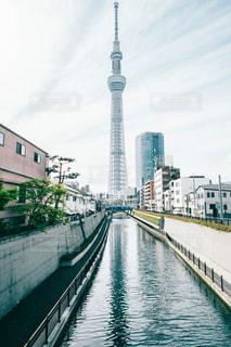 十間橋から見る東京スカイツリーの写真・画像素材[1286198]