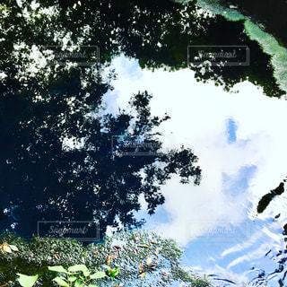 空の雲が溶け出すような景色に出会えますの写真・画像素材[1433629]