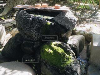 岩の苔がたまらないの写真・画像素材[3125735]