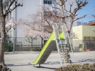 公園の写真・画像素材[1287281]