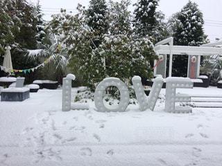 雪の中でジャンプ アップ者の写真・画像素材[1288163]