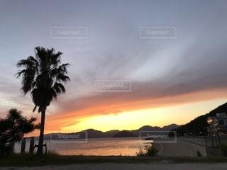 夕日。の写真・画像素材[1288550]