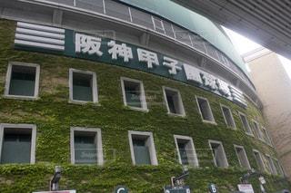 阪神甲子園球場の写真・画像素材[1631372]