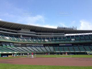 緑の芝生と大きなスタジアムの写真・画像素材[1846285]