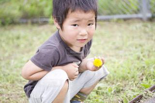 草の中に立っている小さな男の子の写真・画像素材[4006380]